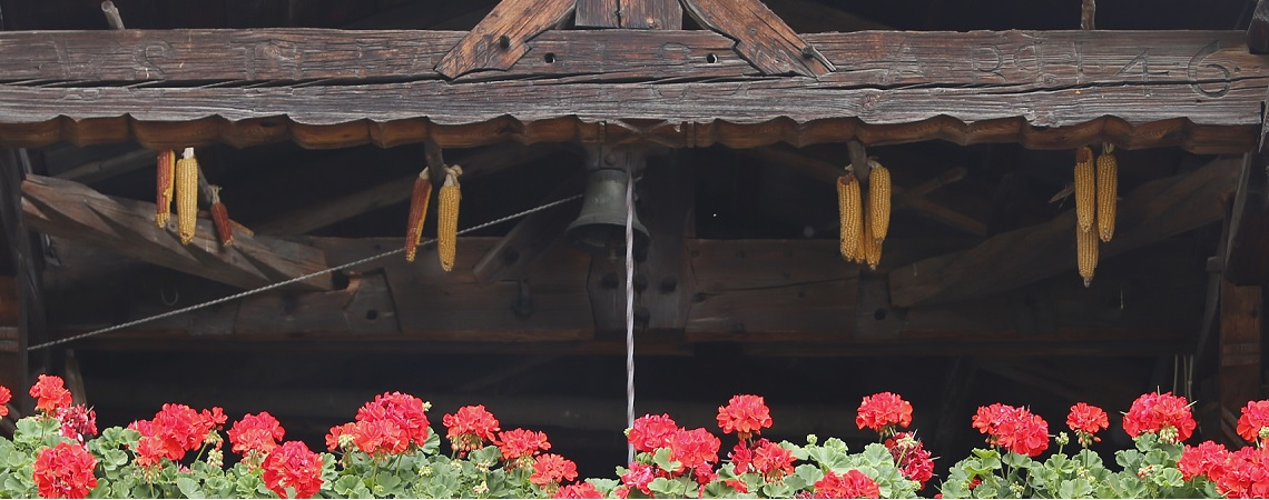 Hausansicht Dachstuhl